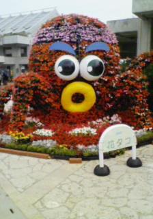 沖縄2日目゜+。(<br />  *′∇`)。<br />  +゜